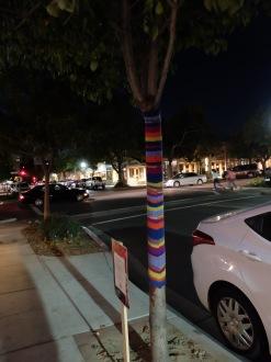 Dans les rues de Claremont, la décoration est également soignée. Ici, un manteau de laine pour un arbre qui passera un hiver bien confortable.