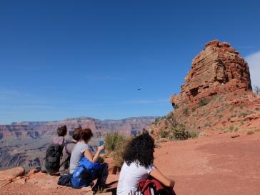 Une pause pour observer les oiseaux, qui peinaient énormément face au vent (des oiseaux-cerf-volants !)