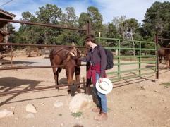 Louis qui fait copain-copain avec les mules