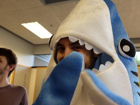 Requin timide.