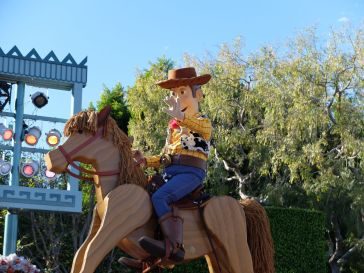Coucou Woody