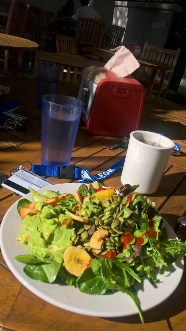 Salade du 14 décembre, à midi. Il fait vingt degrés donc on mange dehors. Normal.