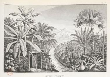 Boitard Pierre, L'art de composer et décorer les jardins, Paris, Roret, 1847 (1834), hors pagination. Capture d'écran réalisée à partir de la version numérisée par la BNF.