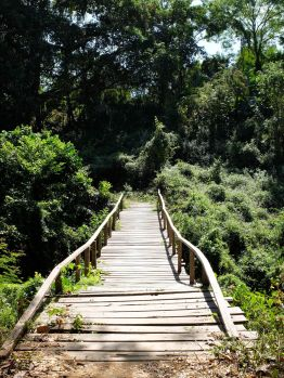 Mon pont préféré sur l'île !