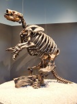 Le paresseux terrestre d'Harlan ou la preuve qu'on peut être végétarien et obèse.