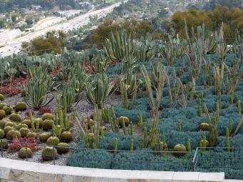 Vue sur le promontoir des cactus.