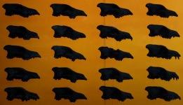 Des crânes de loups par centaines.