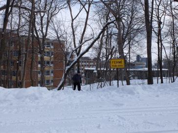 L'aménagement du parc ne doit pas être simple en hiver.