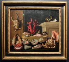 """Jacques Linard, """"Nature morte aux coquillages et au corail"""", 1640 : Ce tableau est exposé dans une niche dédiée aux natures mortes et autres objets de curiosité. Je n'ai malheureusement pas réussi à photographier cette installation en entier."""