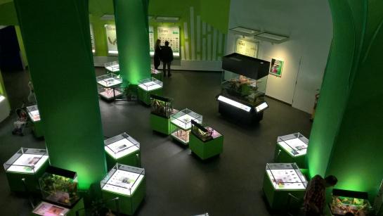 Vue sur l'Insectarium