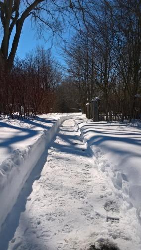 C'est sur ce genre d'images qu'on peut appréhender la quantité de neige tombée...