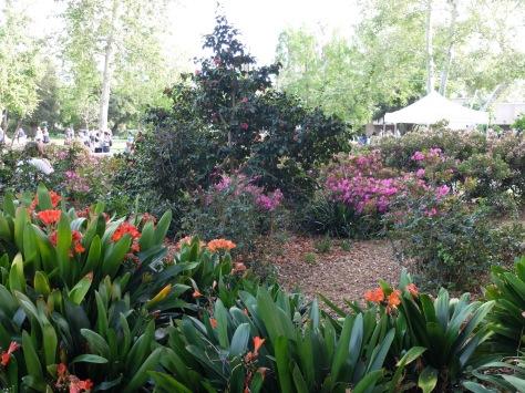 Petit aperçu du campus si coloré au printemps.