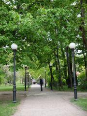 """De belles allées avec de beaux lampadaires, qu'on va appeler """"Les Belles Allées avec les Beaux Lampadaires"""""""