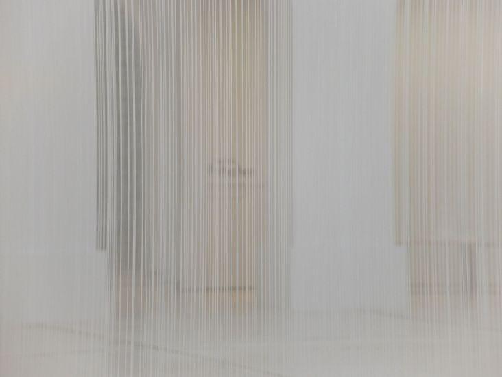 Une installation de Susanna Fritscher.