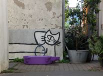 Un chat-cyclope.