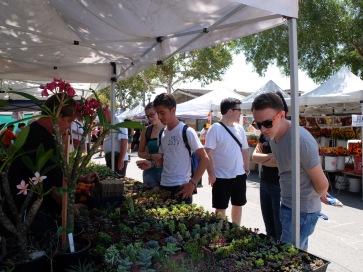 Au marché (farmer's market), José a acheté un cactus qu'il a nommé Cecil en référence à la mascotte de Pomona College.