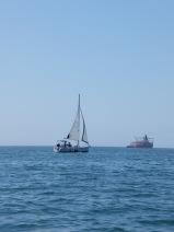 A l'horizon, les autres voiliers ont beaucoup plus de classe que notre embarcation.