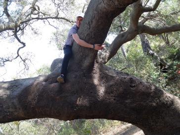 Petite pause escalade et câlins aux arbres.