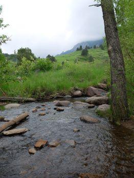 Au bord de la rivière (1)