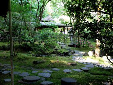 Le jardin de thé (2)