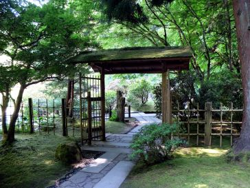 Le jardin de thé (1)