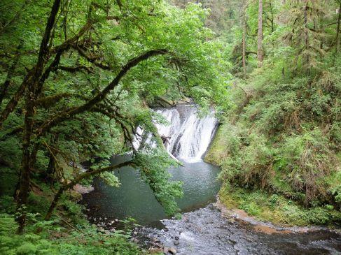 Une cascade avec un bassin bien défini : on s'y baignerait presque !