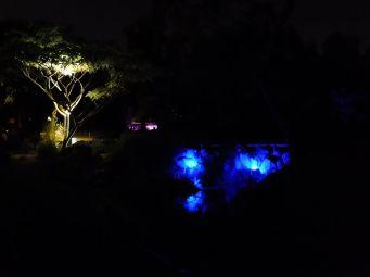Le jardin des plantes s'illumine de lumières et couleurs un peu mystérieuses.