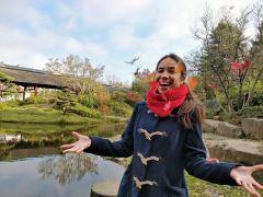 Sur l'Île de Versailles, avec les feuilles d'érable (3)