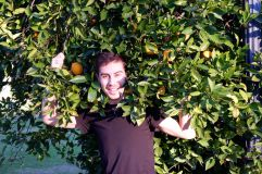 Les orangers de Scripps (1)