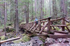 Un pont qui s'accorde bien avec son environnement