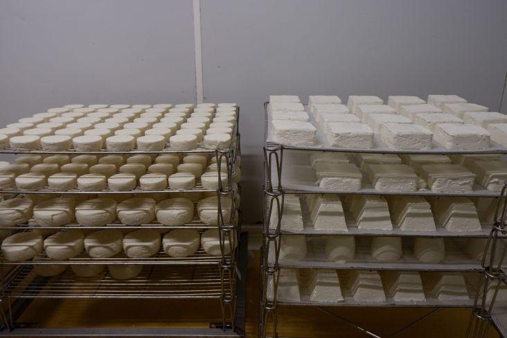 Des fromages de toutes les formes !