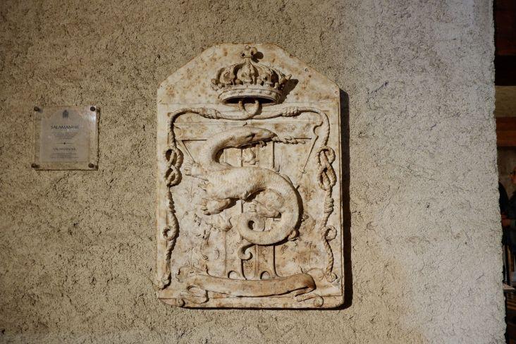 La salamandre : cinq années d'histoire de l'art m'ont bien fait intégré qu'il s'agit de l'emblème de François Ier.