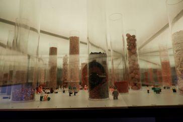 Des semences dans des tubes (des silos). L'oeuvre fait appel à mon goût pour la collection, j'ai adoré observer la diversité des graines présentées, comme si on était dans un musée.