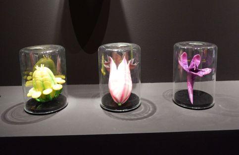 """Darlen Farris-LaBar, """"Ancient Mediterranean Flowers from the Soil's edge"""", 2017. Des espèces en voies de disparition faites en impression 3D. Elles poussent dans des îles de la Méditerranée."""