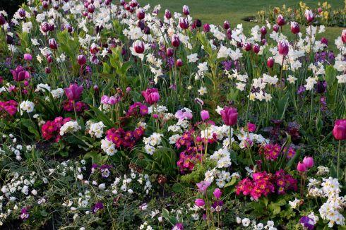 Compositions florales magnifiques.