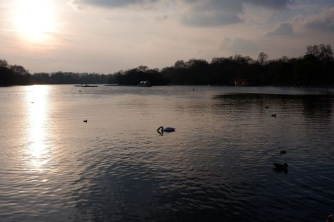 Hyde Park à la tombée du jour (1)