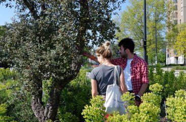 Une de mes photos préférées : Justine, botaniste en herbe (haha), fait découvrir à Nathan un chêne liège pour la première fois.