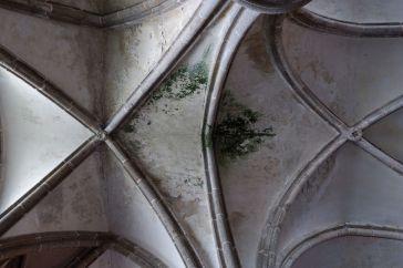 Effet ruines (1)