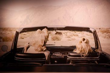 """""""The Chrysler"""" : on s'imagine déjà le film, non ?"""