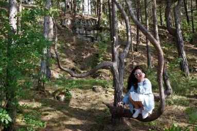 Ces arbres sont de véritables invitations à s'asseoir