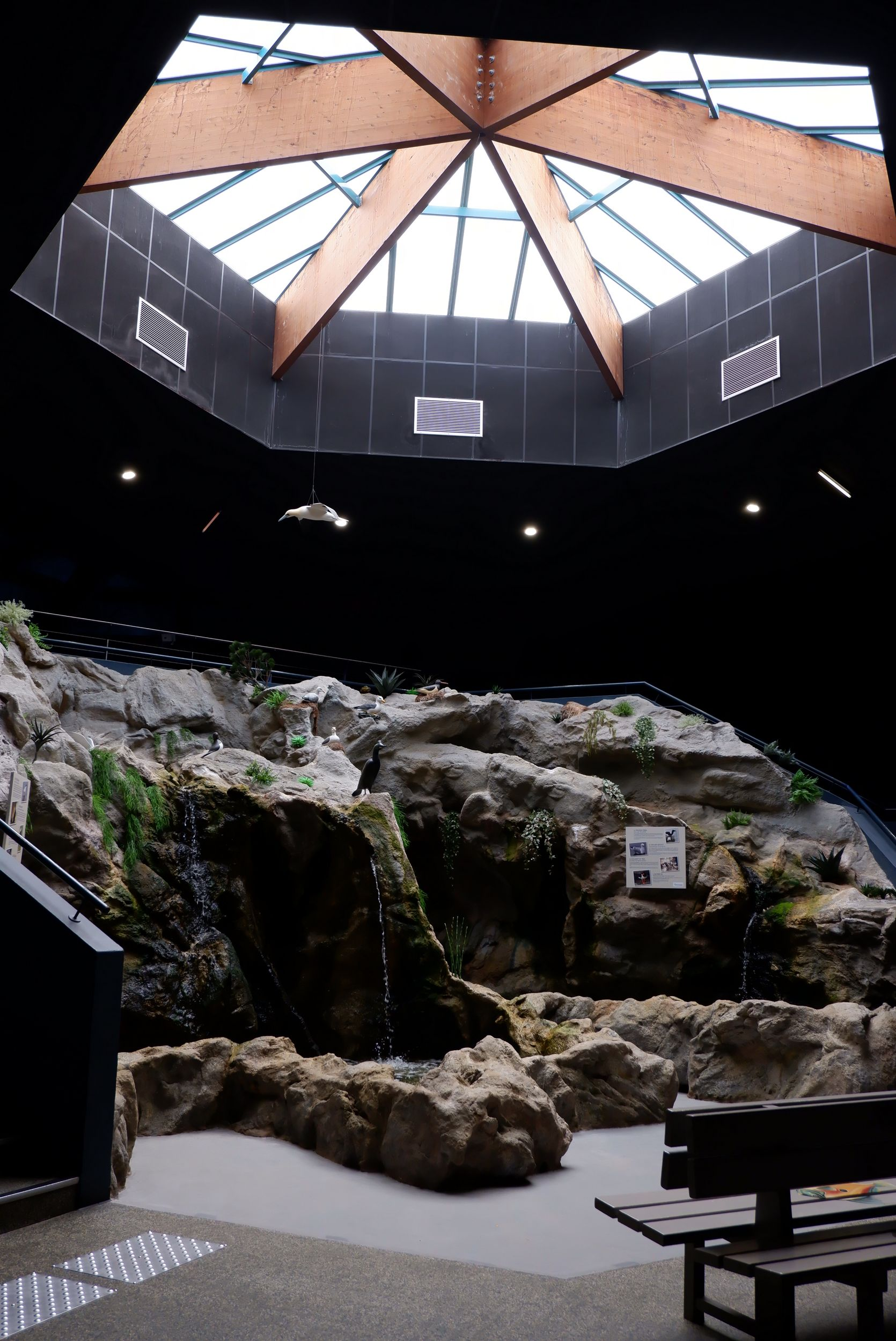 intérieur océarium croisic