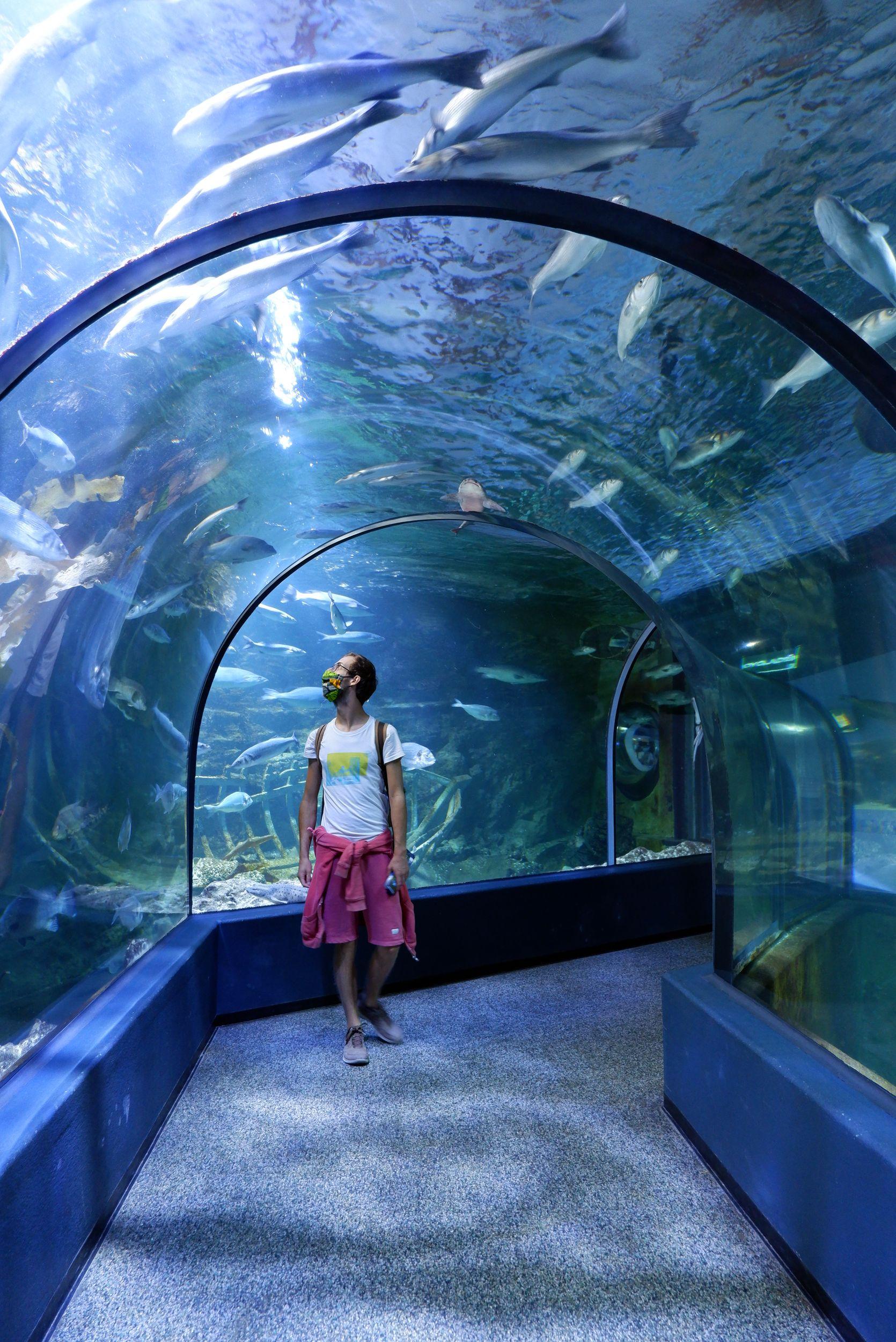 tunnel sous l'eau