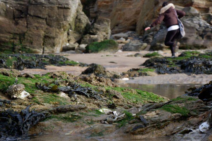 Un bout de plage et Marina sautillant à l'arrière-plan