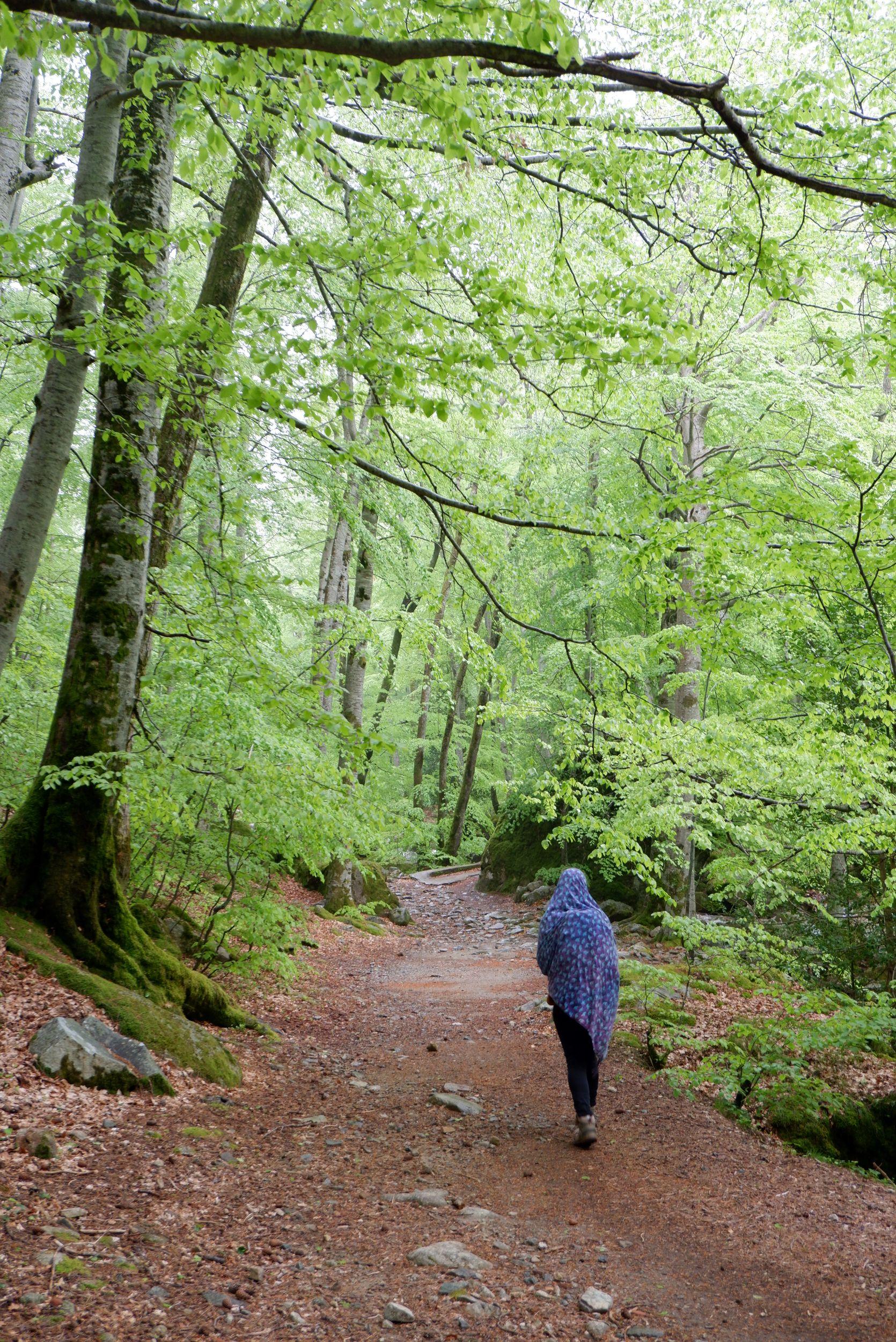 Justine dans la forêt couverte d'un foulard