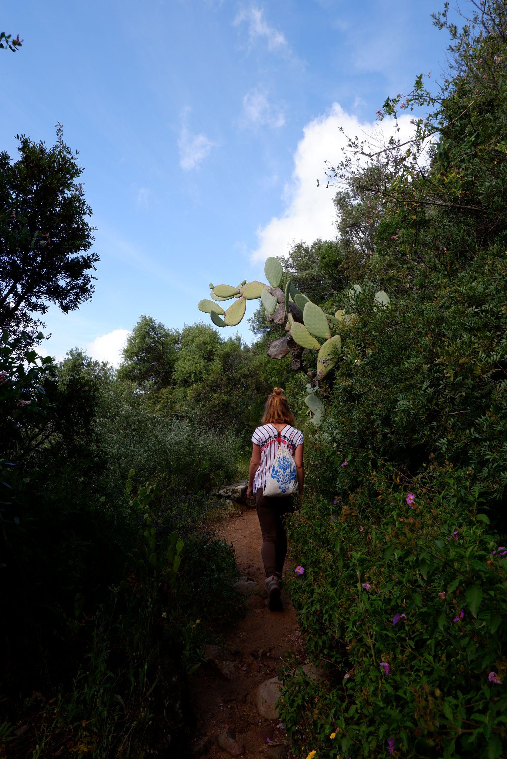 justine sous un cactus