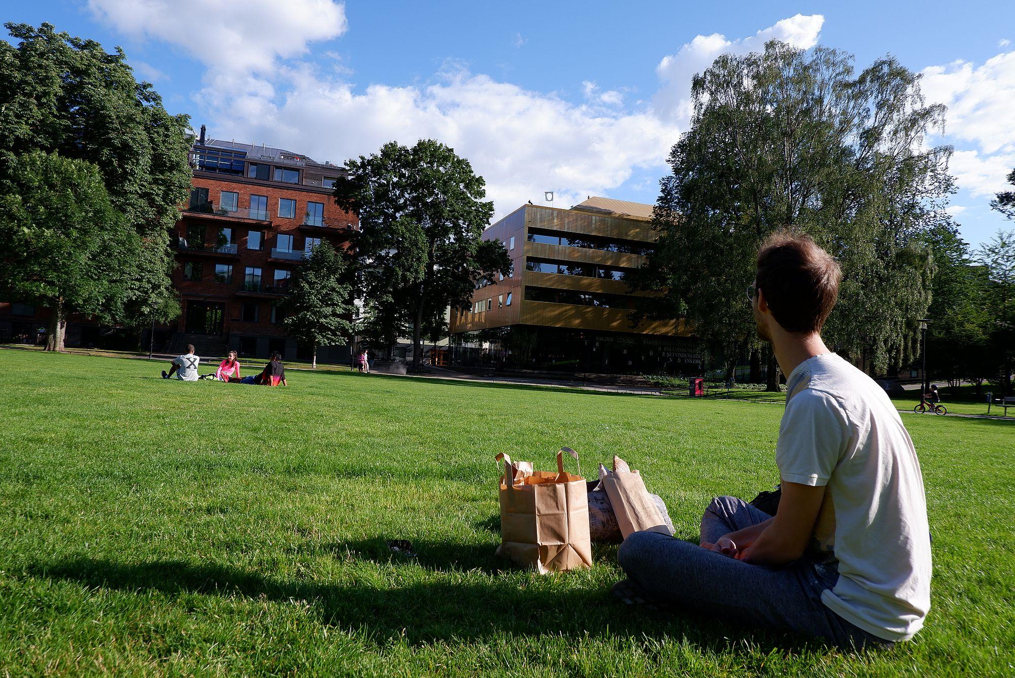 Ryan assis dans l'herbe, avec des sacs de courses remplis de pain à Vasastan.